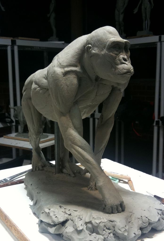 Easy Clay Sculptures : gorilla hand anatomy - Google Search ...