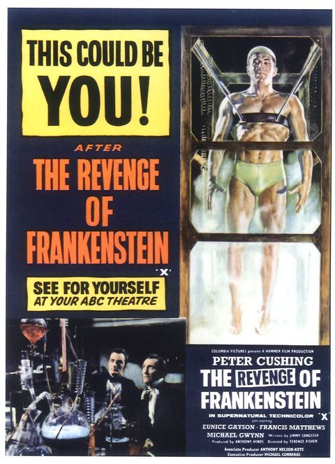 overall thesis of frankenstein Frankens choose one of the following frankenstein, the monster, has been the star of the final paragraph should be an overall conclusion with a restatement.