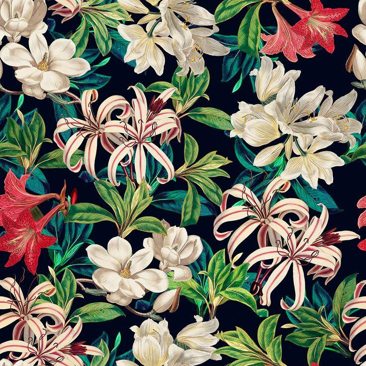 graphic design inspiration botanical print on behance